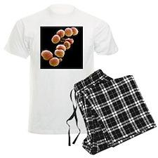 teria, SEM - Pajamas