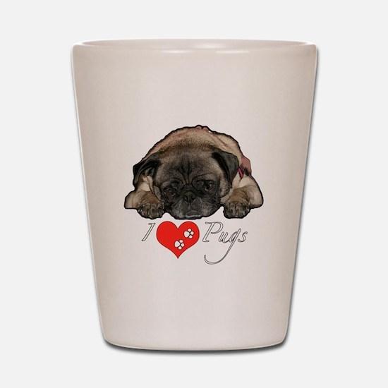 I love pugs Shot Glass