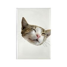 Kitty Face Rectangle Magnet (10 pack)