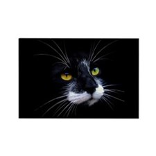 Black and White Cat Face Rectangle Magnet (10 pack