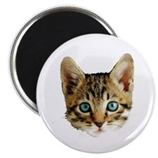 Kitty Cat Face Magnet
