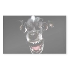 Vicious Chihuahua Decal