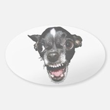 Vicious Chihuahua Decal
