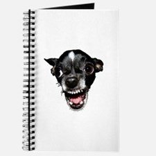 Vicious Chihuahua Journal