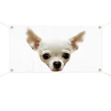 White Chihuahua Banner