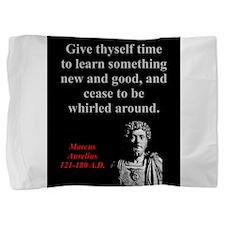 Give Thyself Time To Learn - Marcus Aurelius Pillo