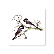 "Male and Female Chickadees Square Sticker 3"" x 3"""