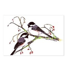 Male and Female Chickadees Postcards (Package of 8