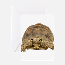 FIN-tortoise-CROP.p... Greeting Cards