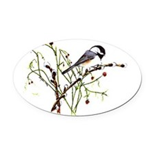 Pussywillow Chickadee Oval Car Magnet