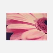 Pretty Pink Gerbera Daisy Rectangle Magnet