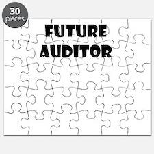 Future Auditor Puzzle