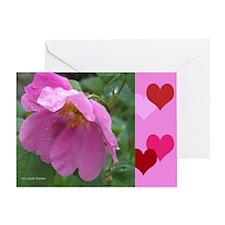Alaska Wild Rose Greeting Card