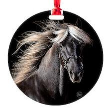 choco_horse_rnd.png Ornament
