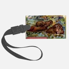 Antique French Hippopotamus Postcard Luggage Tag
