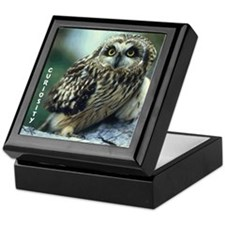 Curiosity Owl Keepsake Box