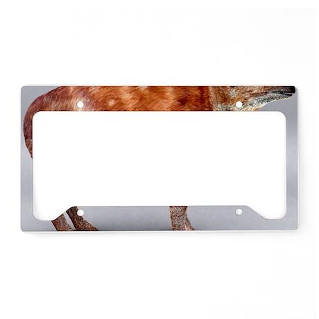 Palaeotherium - License Plate Holder