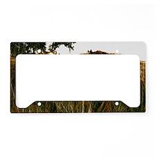 Eohippus - License Plate Holder