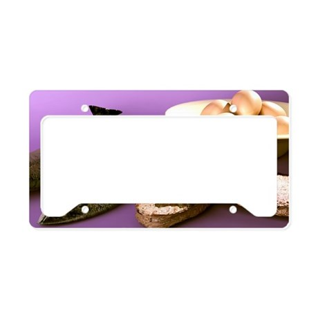 r artwork - License Plate Holder