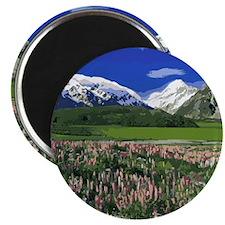 Serene Mountain Scene Magnet