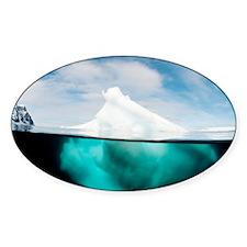 Antarctic iceberg, split view - Decal