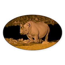Black rhinoceros - Decal