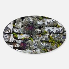 Drystone wall with plants - Sticker (Oval)
