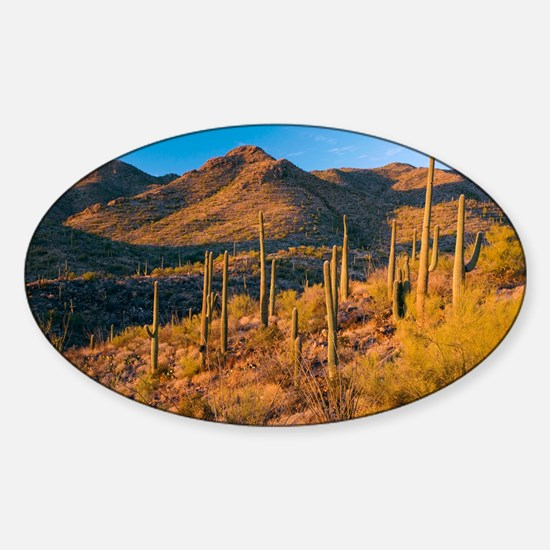 - Sticker (Oval)
