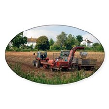 Harvesting potatoes - Decal