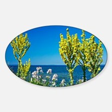 Lake-side flowers - Sticker (Oval)
