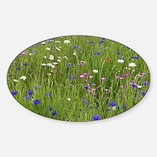 Meadow flowers - Sticker (Oval)