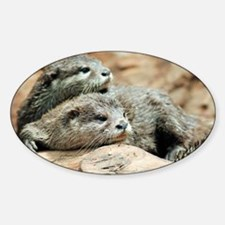 Oriental small-clawed otters - Decal