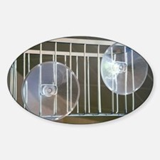 Plastic suction cups - Decal