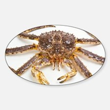 Red king crab - Decal