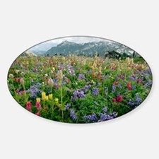 Wildflower meadow - Decal