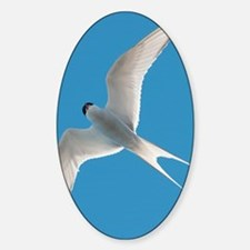 Arctic tern - Sticker (Oval)