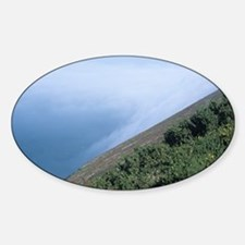 Coastal mist - Sticker (Oval)