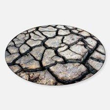 Cracked earth - Decal
