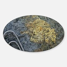 Electrum alloy deposit - Sticker (Oval)