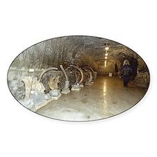Mammoth museum, Siberia - Decal