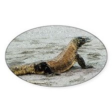 Komodo dragon on a beach - Decal