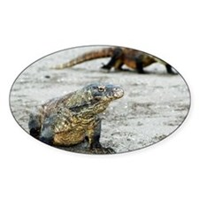 Komodo dragons on a beach - Decal