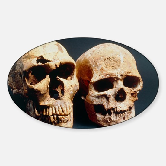 ls - Sticker (Oval)