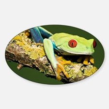 Red-eyed tree frog - Decal