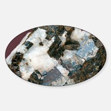 Siderite in cryolite matrix - Sticker (Oval)