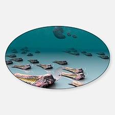 Trilobites - Decal