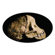 Tuang child skull - Stickers