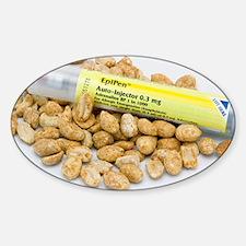 nuts - Sticker (Oval)