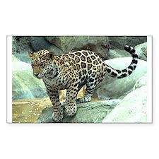Jumping Jaguar Rectangle Decal