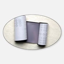 Photographic film roll - Decal